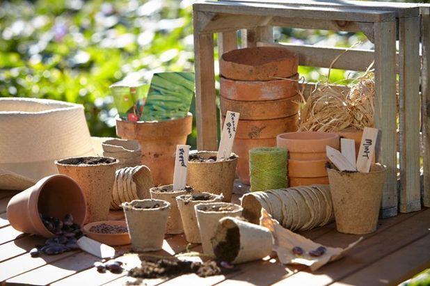 Современный Фасад дома Outdoor Living, Gardening and Irrigation